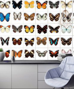 Butterfly Tiles Stickers - Wall