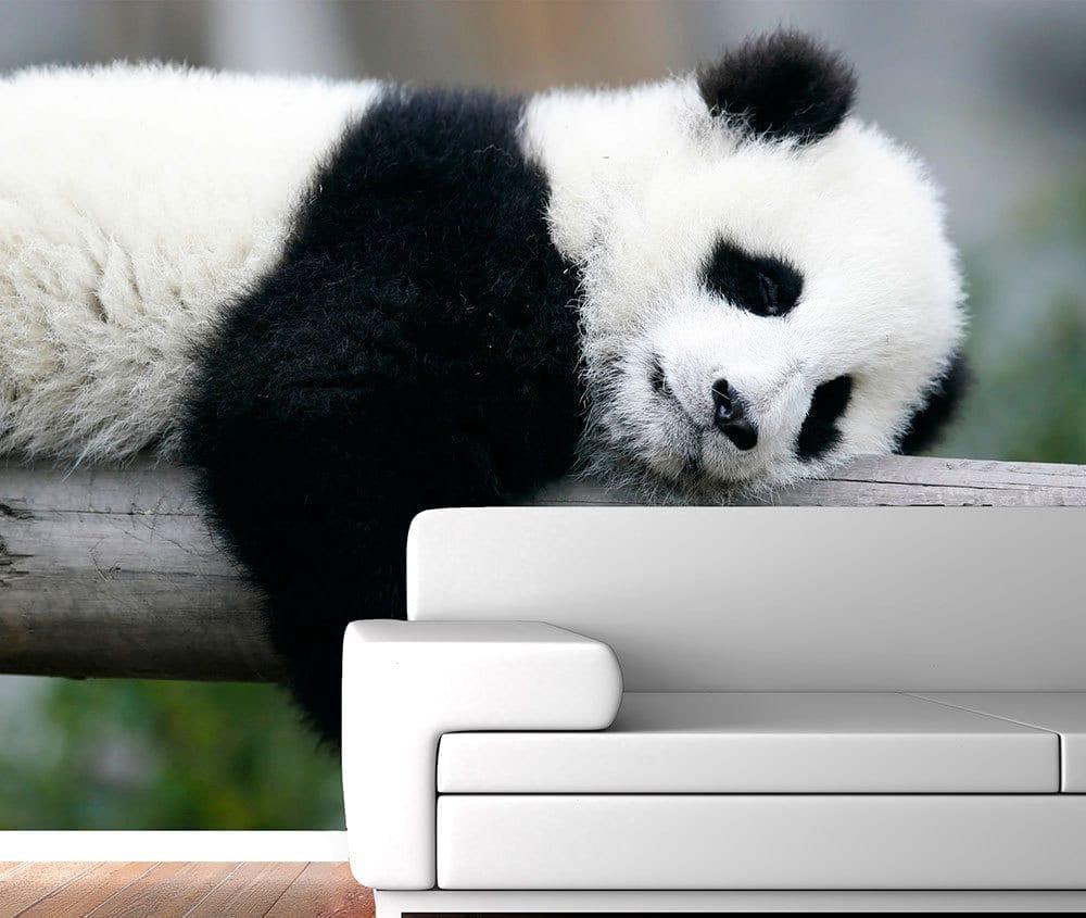 Panda wall mural moonwallstickers panda wall mural amipublicfo Image collections