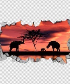 African sunset 3d wallpaper 2