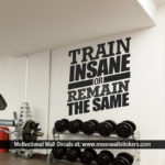 Train Insane or Remain the Same Decor Gym