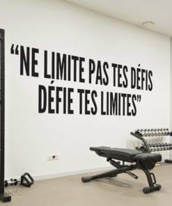 Ne Limite Pas Tes Défis Défie Tes Limites