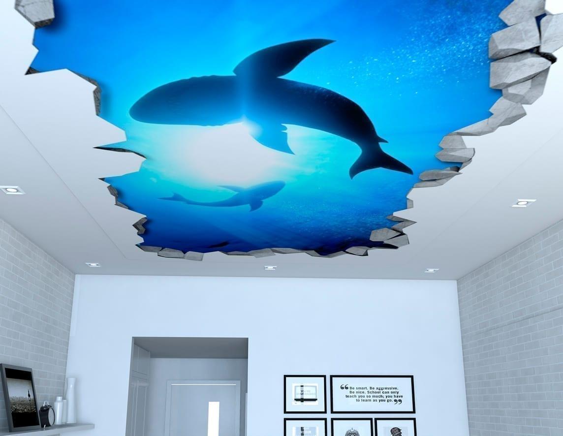 Sharks 3d Effect Ceiling Decals Moonwallstickers Com