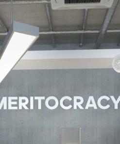Meritocracy 3D Office Wall Decor
